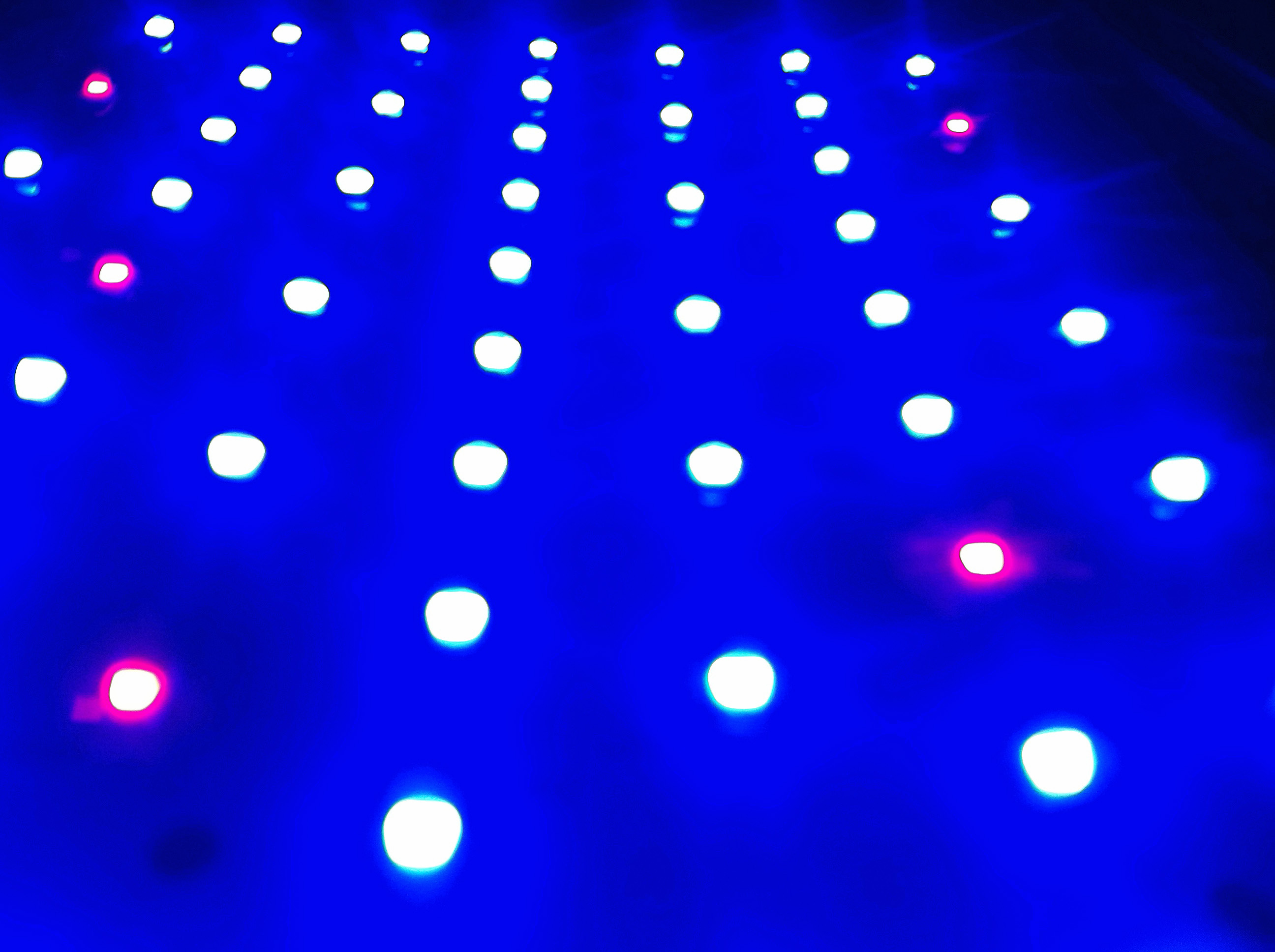 Example of red and blue LEDs with the phosphor removed